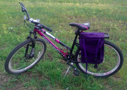 My Bike with New Panniers 2014-06-27