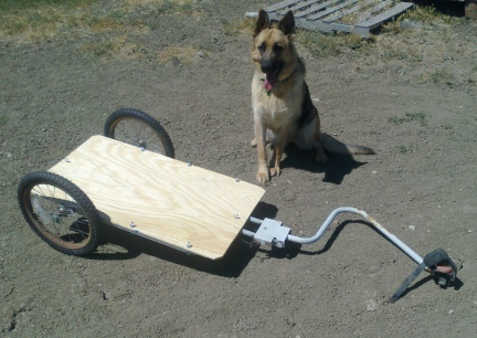 Bike Trailer Finished 2014-07-26