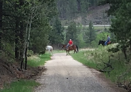 Horse Back Riders Crossing Mickelson Trail 2016-06-01