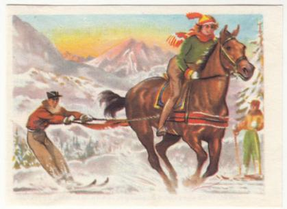 Horse Skijoring Old Card